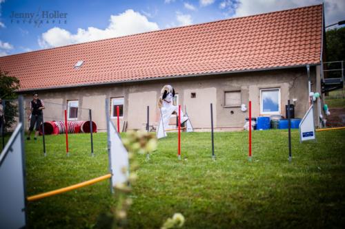 2016-08-13-Jen-Tierheimfest-24