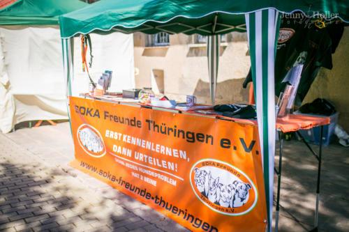 2017-08-19-Jen-Tierheimfest-19